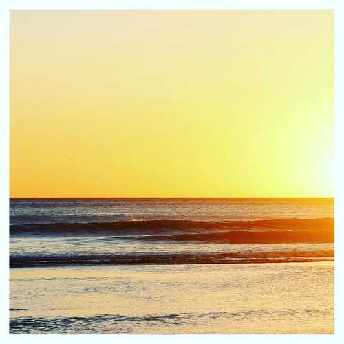 shaka surf store instagram post