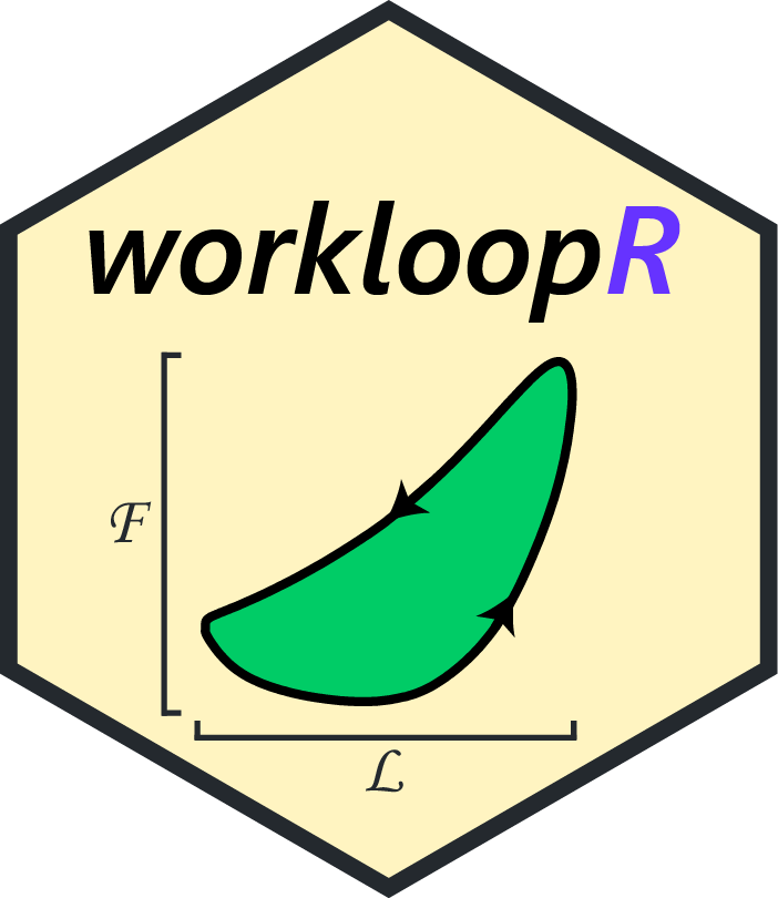 workloopR icon