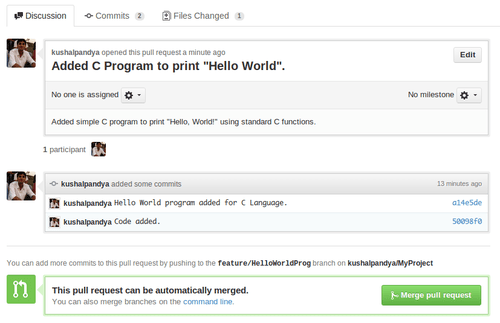 GitHub Pull Request View