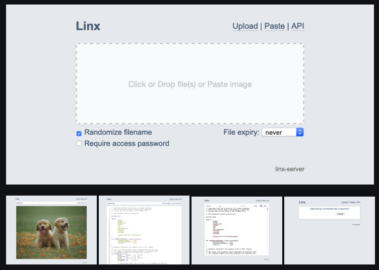 Linx Screenshot