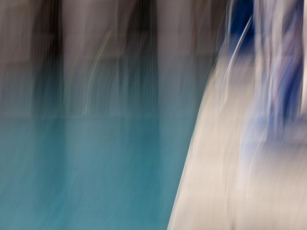 Pool Palms #2609