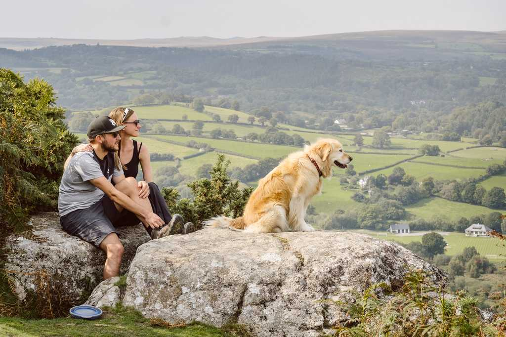 Hiking with Bess the Golden Retriever while at a housesit in Dartmoor