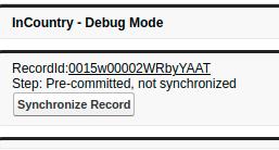 InCountry Debug Mode - Output
