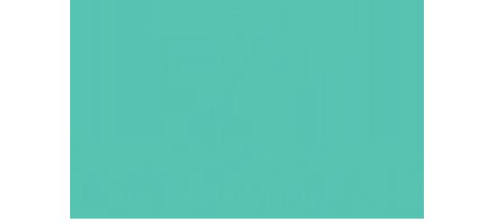 Bird + Stone