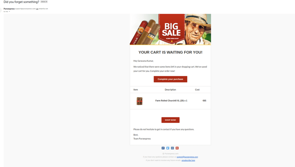 Abandoned cart email example