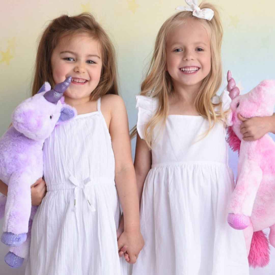 The Petting Zoo: What goes together with best friends? 🦄 unicorns!🦄 have you shopped for our posh pink and purple unicorns online? Check us out!