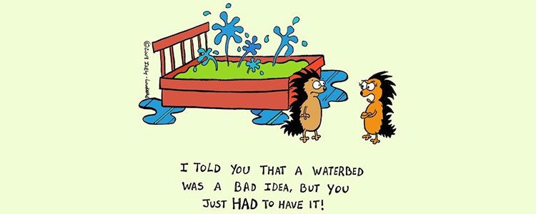 Two porcupines discussing a how a waterbed was a bad idea.