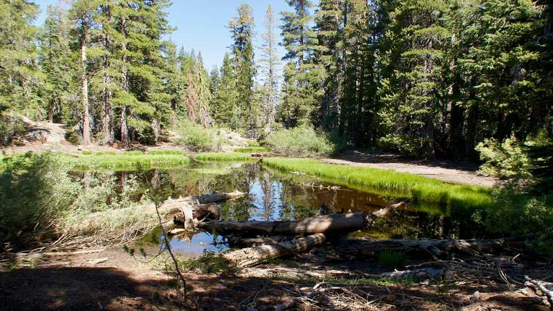 A small pond near the PCT