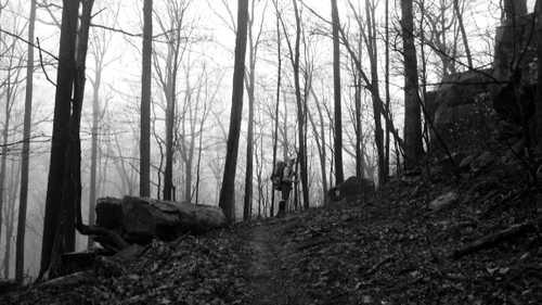 On Bird Mountain Trail