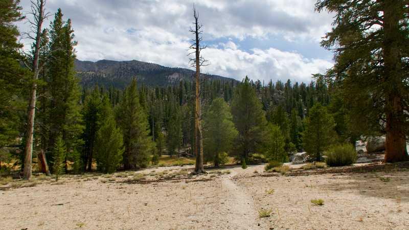 The PCT near Death Canyon Creek