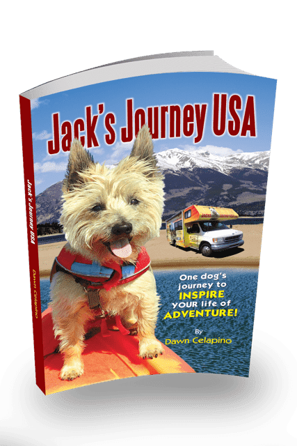 Dog Book Review: Jack's Journey USA
