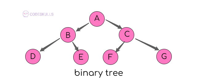 binary trees introduction and its types