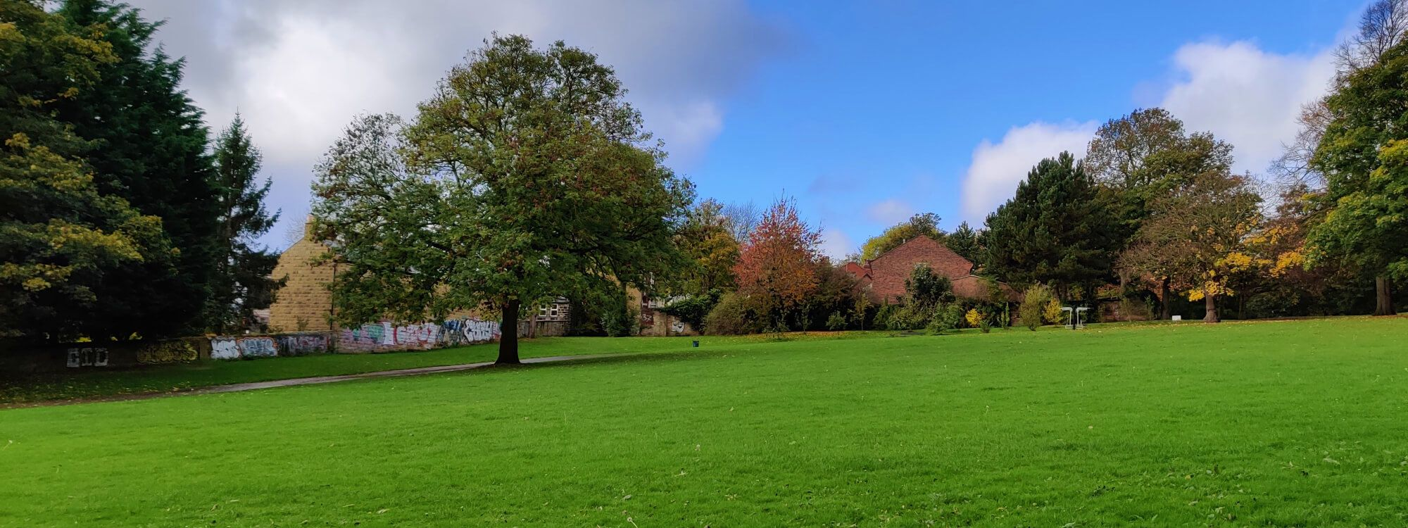 Large green grass field up to a tree on the left at Burley Park.