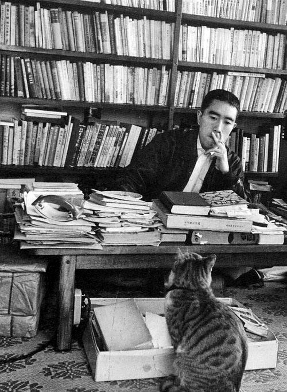 Юкио Мисима с котом в своем кабинете. Фото: pinterest.jp