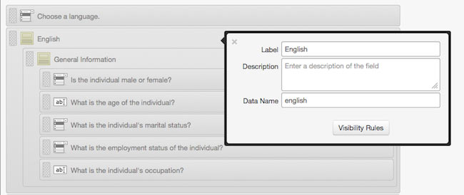 Multiple Language Surveys