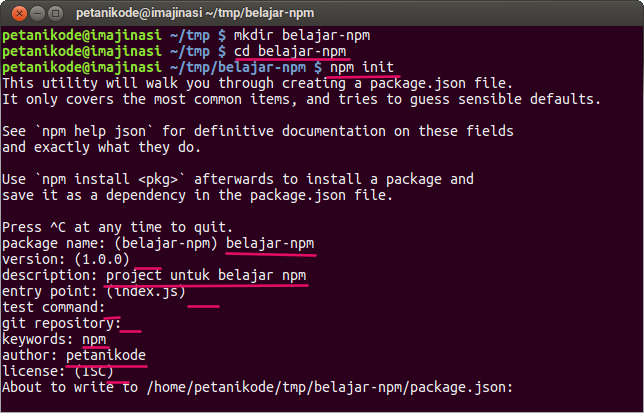 Make new Project Nodejs with NPM