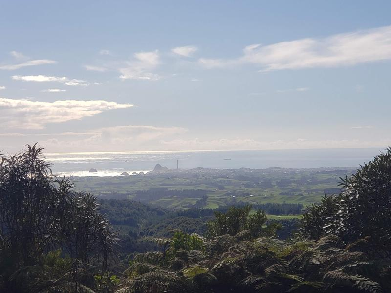 Looking down on New Plymouth from Pukeiti Summit