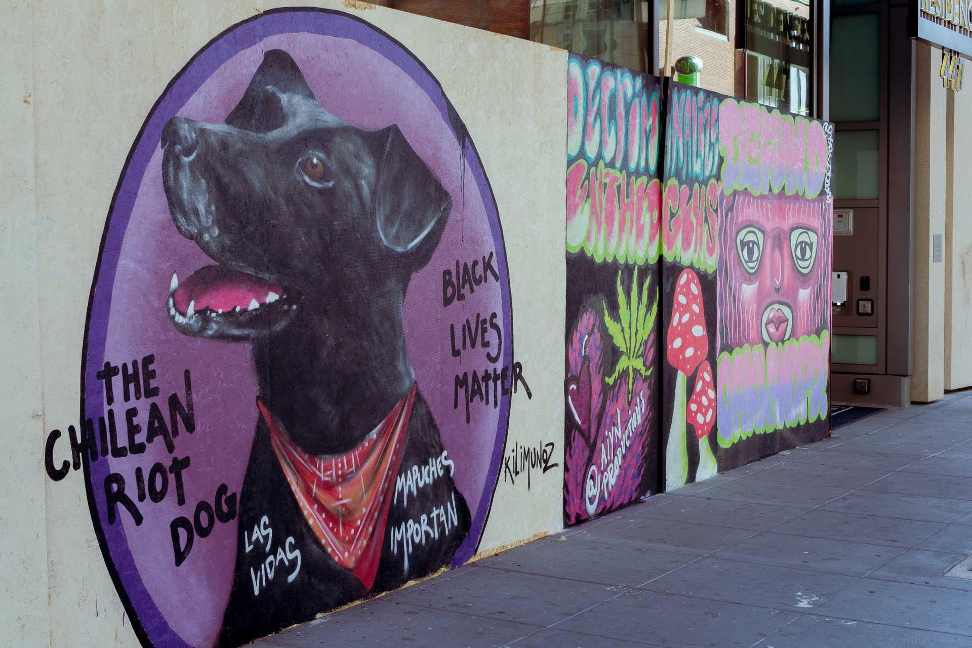 Chilean_Riot_Dog.jpg