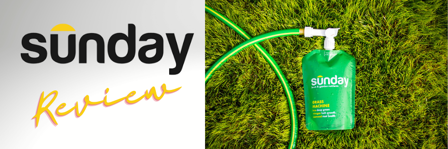 Sunday Lawn Care Review Article