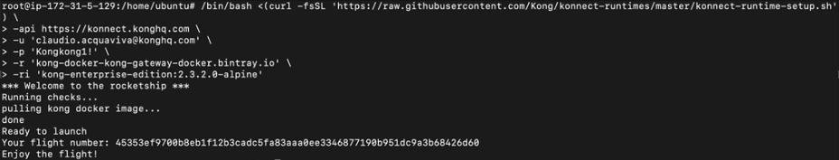 Konnect Runtime Setup