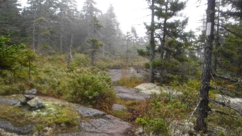 Foggy climb up Bemis Mountain Second Peak