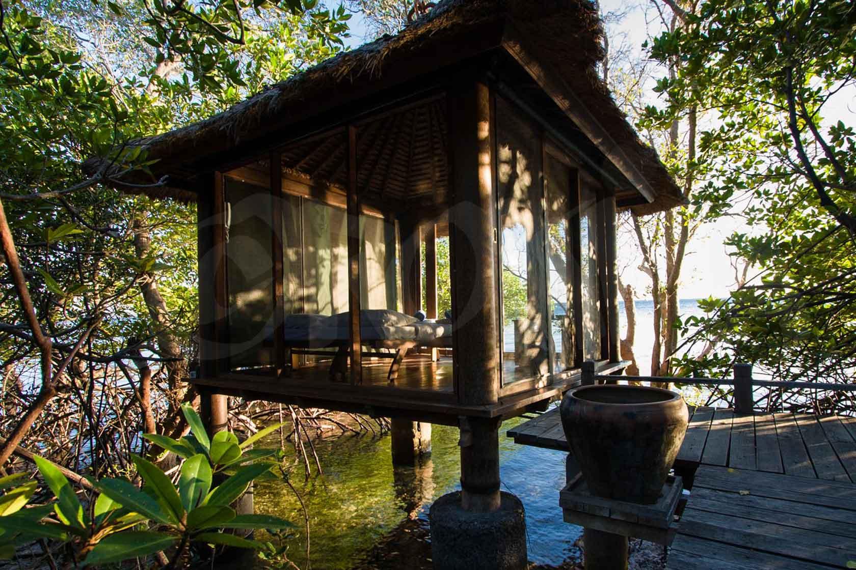 Bali Menjangan
