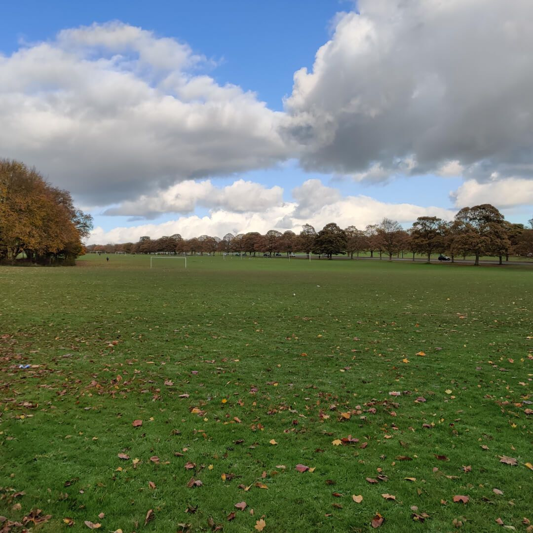 Far field at Roundhay Park