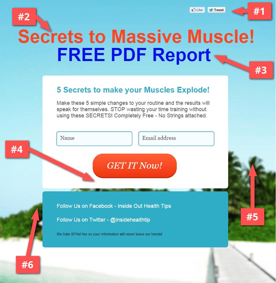 Massive_Muscles_Free_Report_-_massivemusclesfreereport_gr8_com