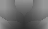 logo netinetidesign