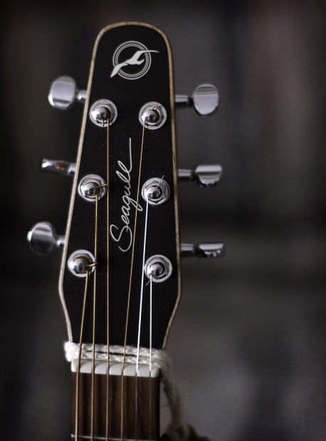 Seagull_guitar_headstock