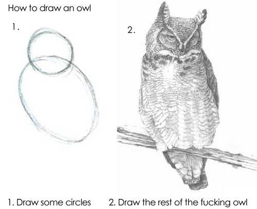 on the left are two drawn circles and on the right is a fully rendered owl with the caption 'draw the rest of the fucking owl'