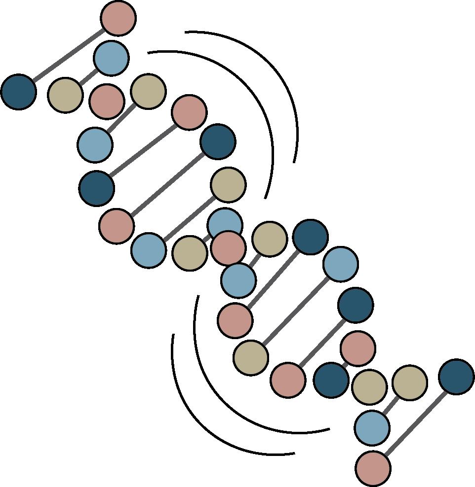 Cell Crunch logo