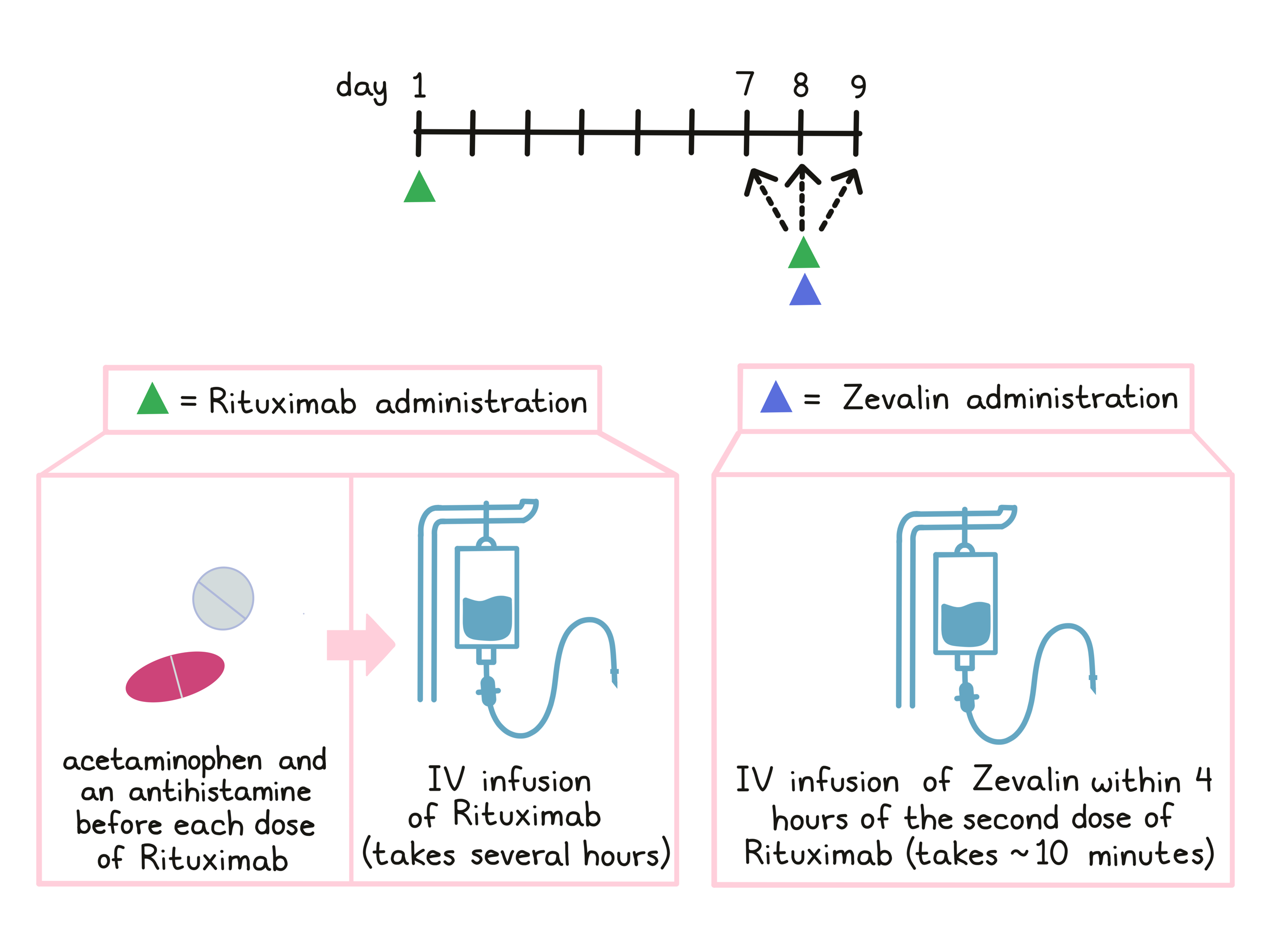 Illustration showing how Zevalin is administered