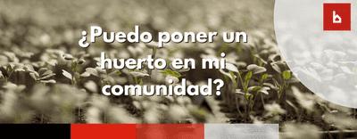 ¿Puedo poner un huerto en los jardines de mi urbanización?