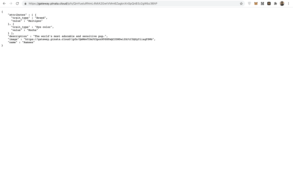 Your page should display the json metadata
