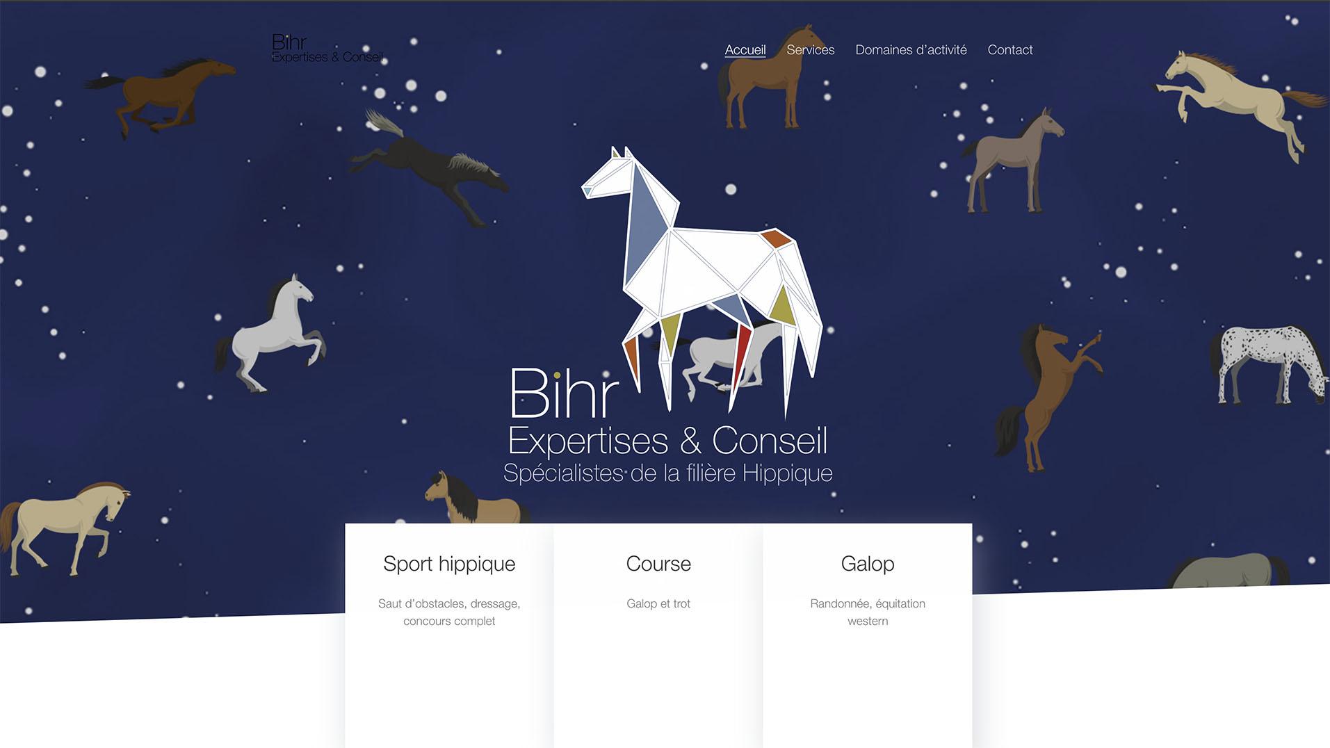 site internet Bihr Expertises & Conseil.