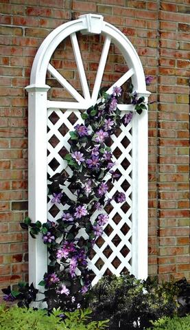 Nantucket Trellis