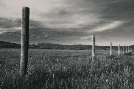 Black and white ranch