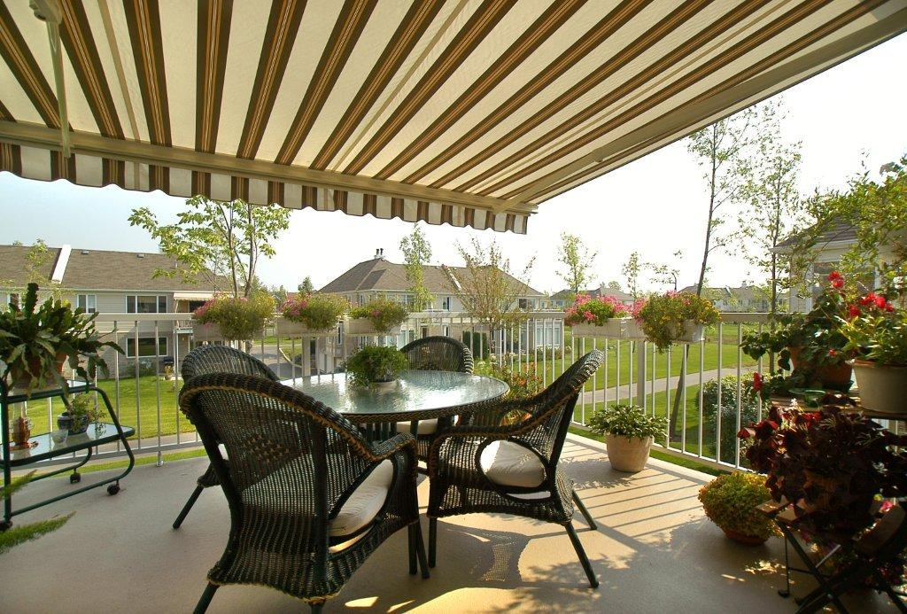 Brasilia Athena Retractable Awning