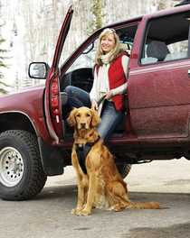 Product How To: Kurgo Enhanced Strength Dog Car Harness