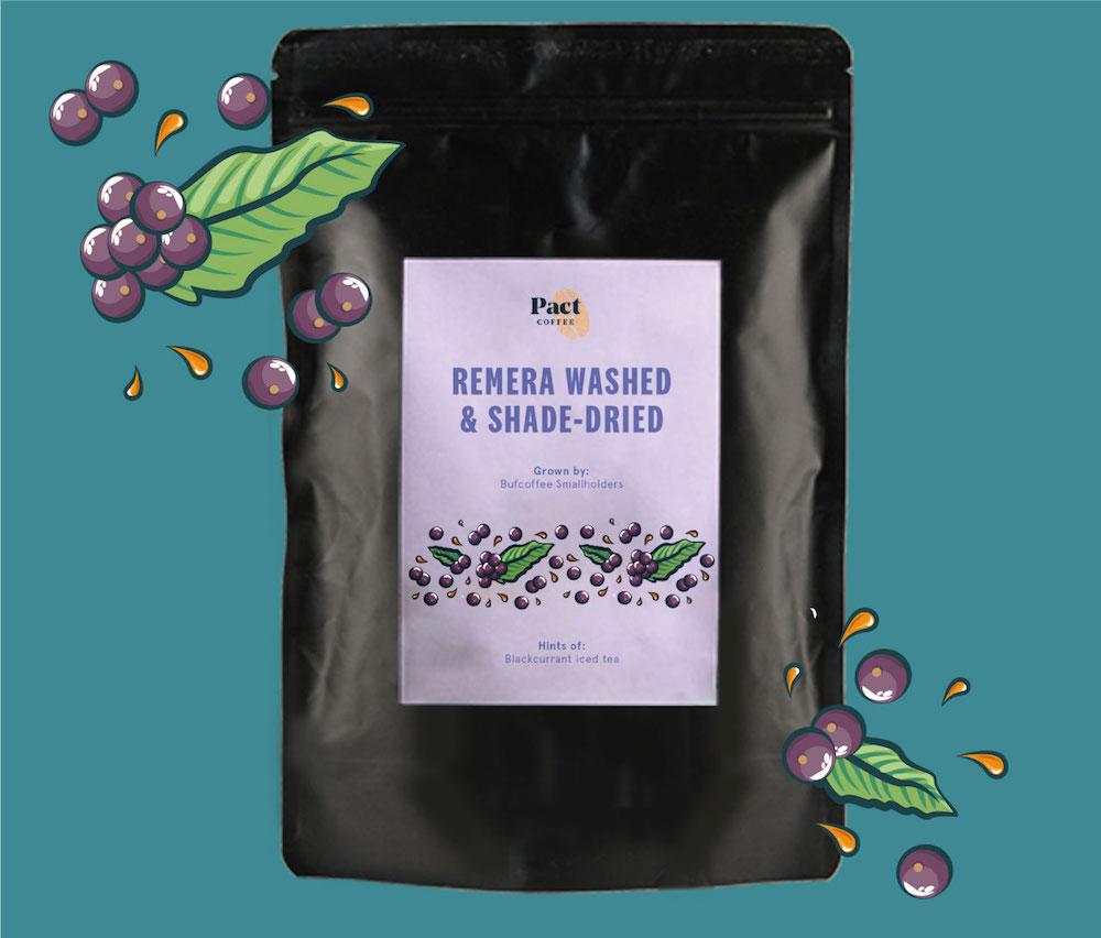 Remera Washed & Shade-Dried Coffee