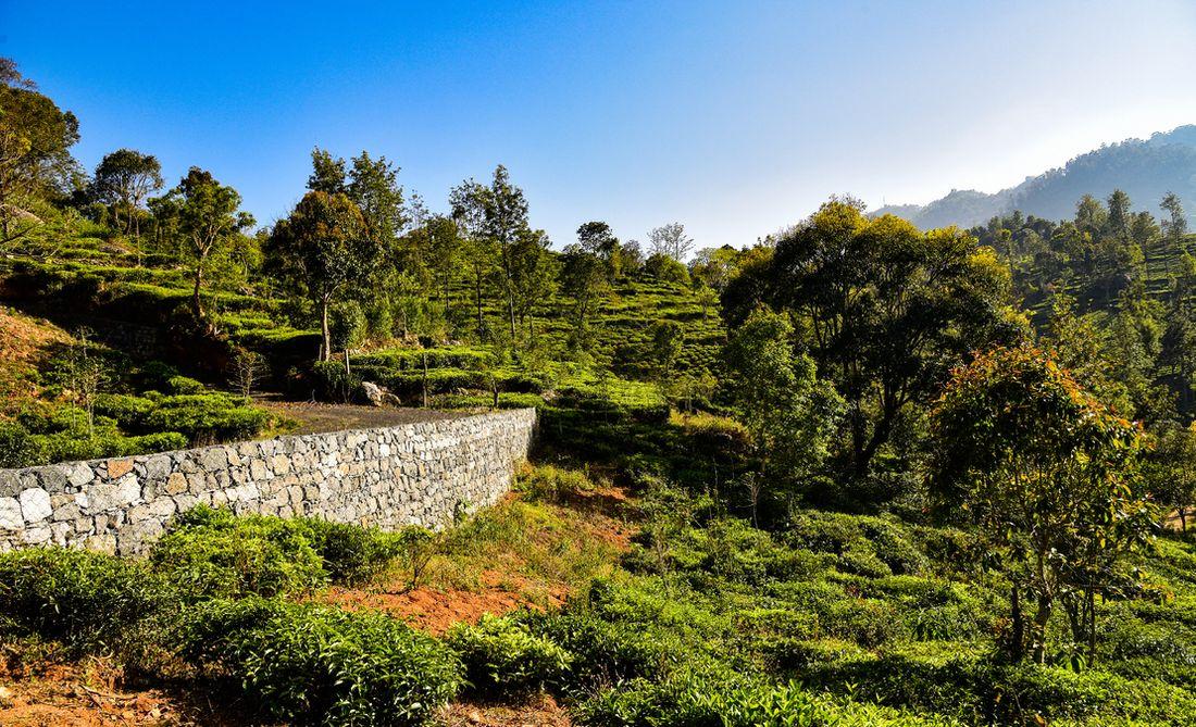 Gabion walls built to retain the road at Vista Chiaro Halakarai