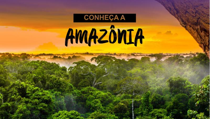 Imagem em destaque para o artigo: Parabéns, Amazônia?