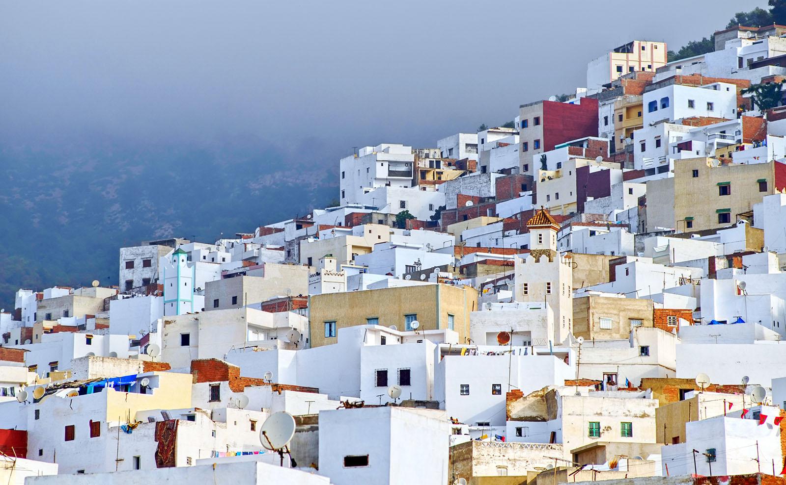 Moroccan El Minzah Orange Salad Inspired by the Novel 'Tangerine'