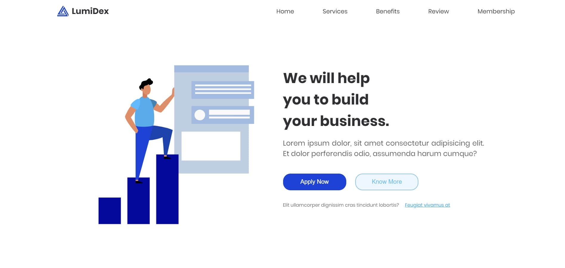 Lumidex Website