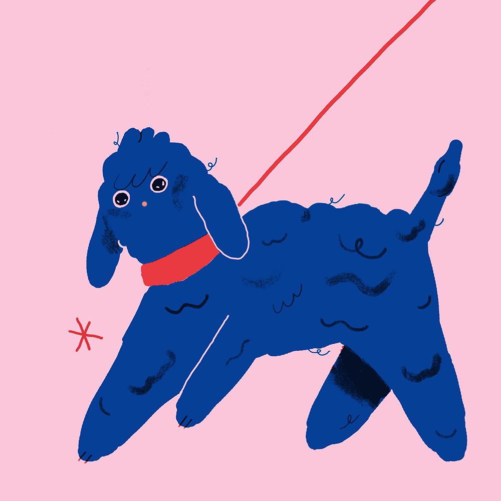 Что увидишь, если посмотреть навсё глазами собаки? Иллюстратор Helena Covell, https://www.helcovell.com