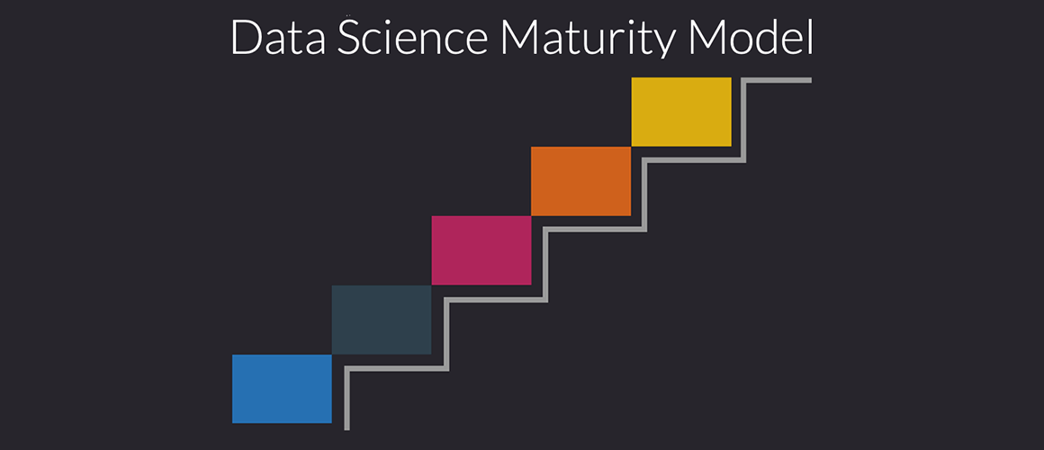 Data Science Maturity Model Whitepaper