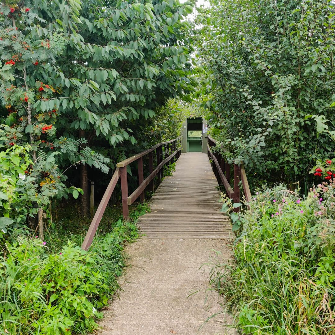 Rodley Nature Reserve path to hide