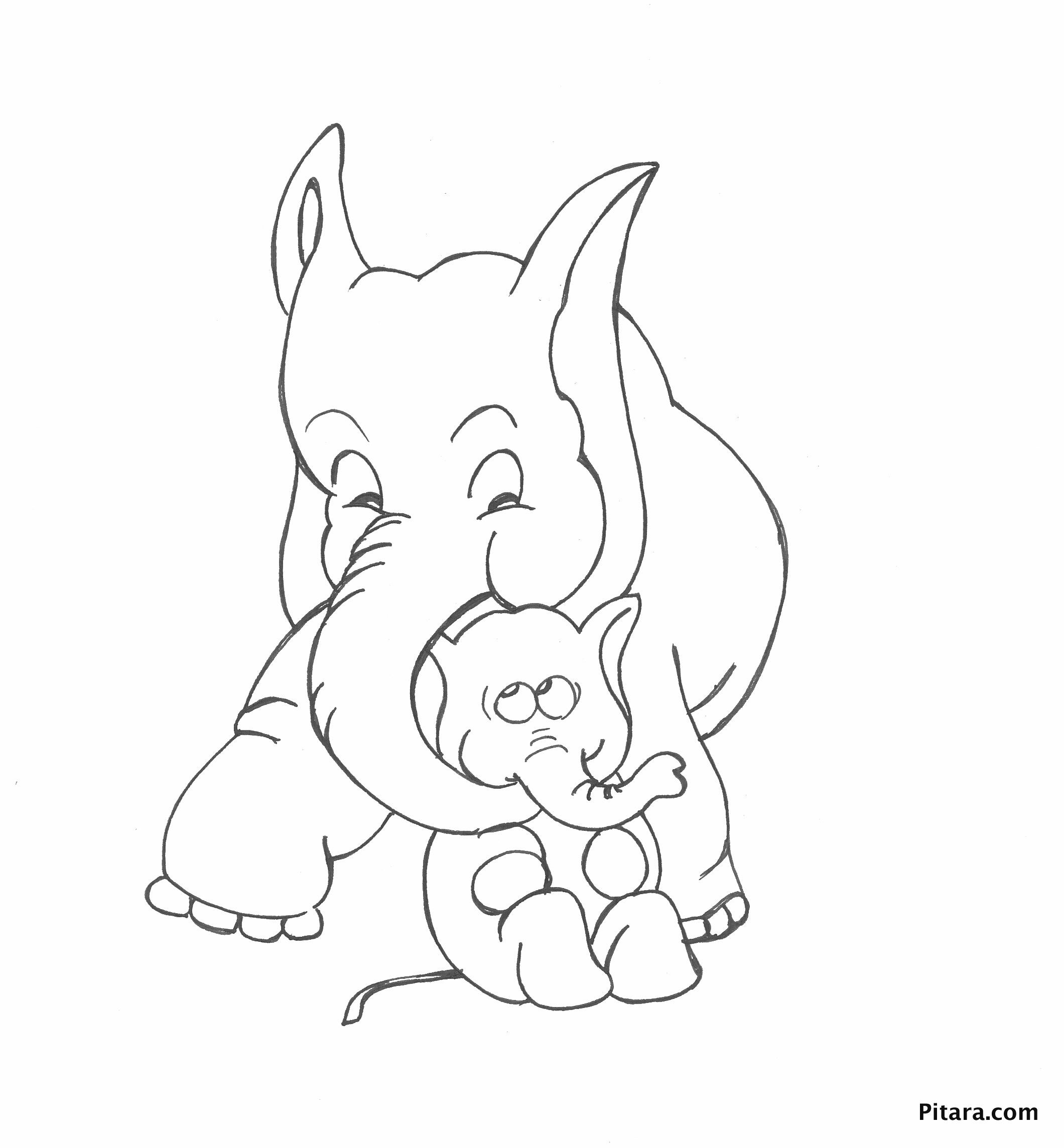 Elephant - Mother & baby