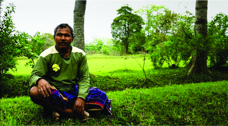 Imagem em destaque para o artigo: Jadav Payeng, o homem da floresta da Índia